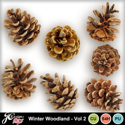 Winterwoodlandvol2