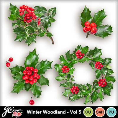 Winterwoodlandvol5