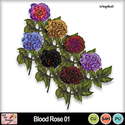 Blood_rose_01_preview_small