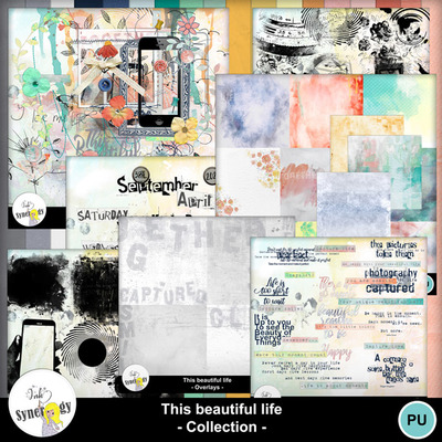 Si-thisbeautifullifecollection-pvmm-web