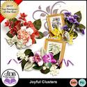 Joyful_cl_small