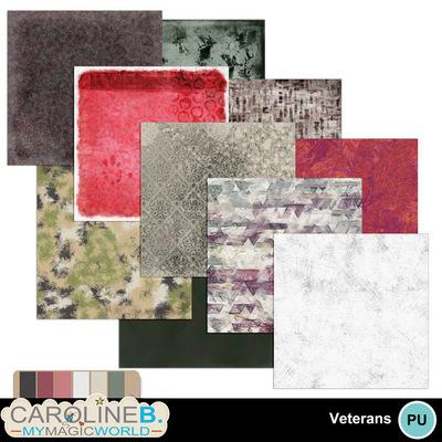 Veteran-papers-4_1