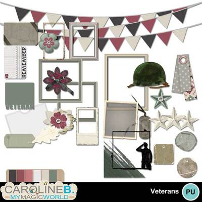 Veteran-emb_1