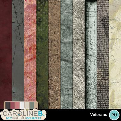 Veteran-papers-2_2