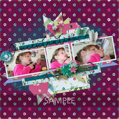 Pbs_amazing_rochelle1