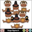 Ginger_pilgrims_01_preview_small