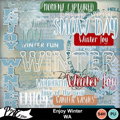Patsscrap_enjoy_winter_pv_wa