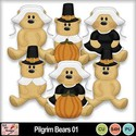 Pilgrim_bears_01_preview_small