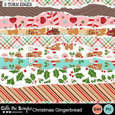 Christmas_gingerbread9