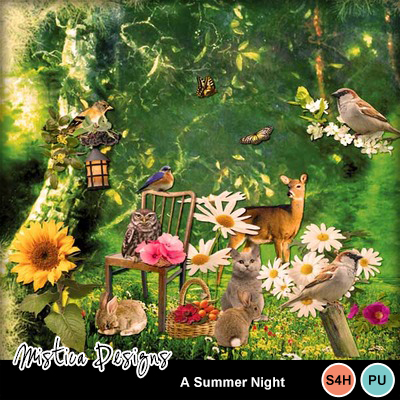 A_summer_night