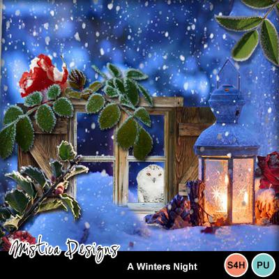 A_winters_night