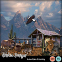American_country_small