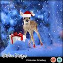 Christmas_grabbag_small