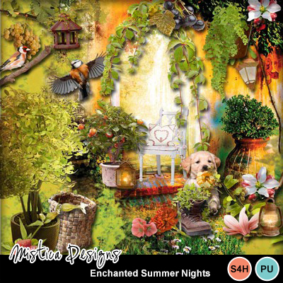 Enchanted_summer_nights