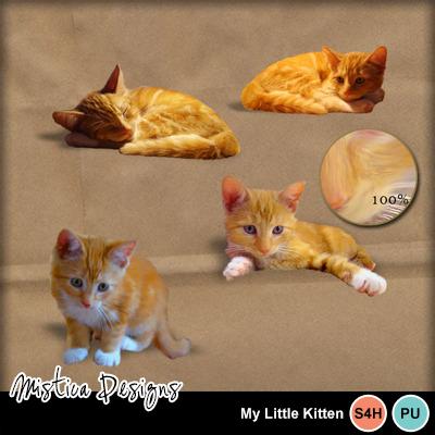 My_little_kitten