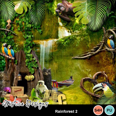 Rainforest_2