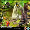 Rainforest_cp_small