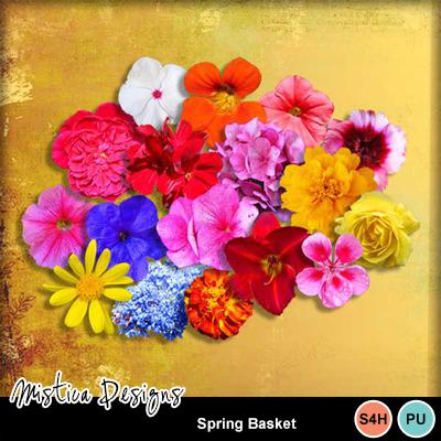 Spring_basket
