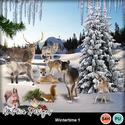 Wintertime_1_small