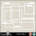 Framesmisc3_small