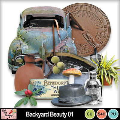 Backyard_beauty_01_preview