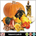 Autumn_s_look_03_preview_small