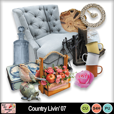 Country_livin__07_preview
