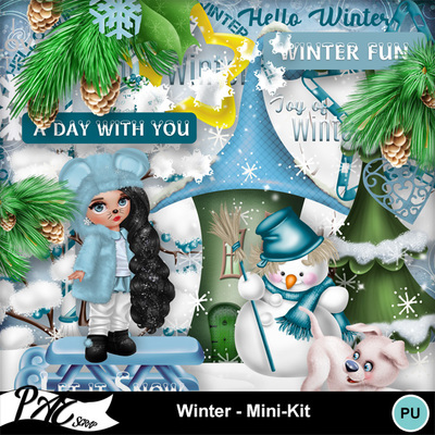 Patsscrap_winter_pv_mini_kit