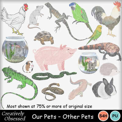 Otherpets600px