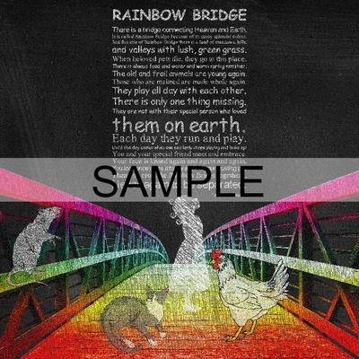 Rainbowbridge-003