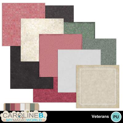 Veteran-papers-3_1