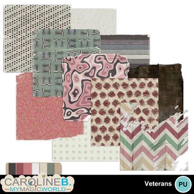 Veteran-papers-5_1