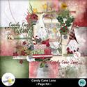 Synergy_ink-candycanelane-pv__6__small