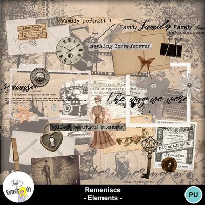 Si_remenisce_elements_pvmm-web