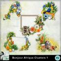 Louisel_bonjour_afrique_clusters1_preview_small