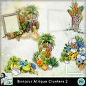 Louisel_bonjour_afrique_clusters2_preview_small