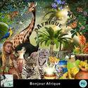 Bonjour_afrique_preview_small