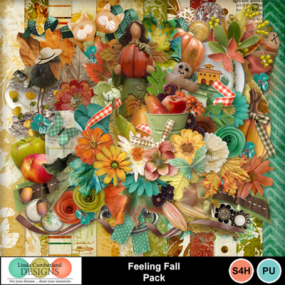 Feeling_fall_pack-1