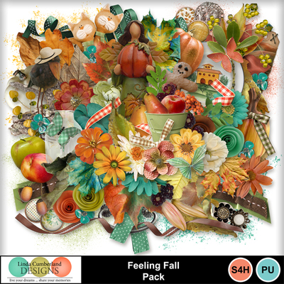 Feeling_fall_pack-3