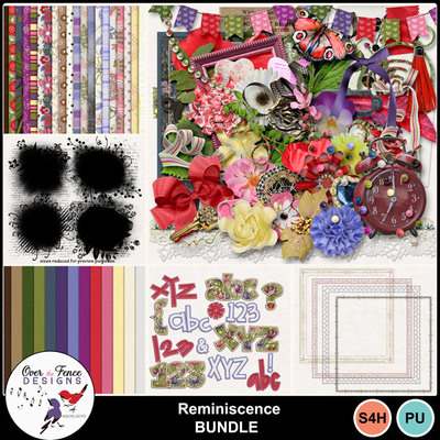 Reminiscence_bundle