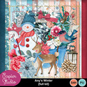 Anyswinter_kit_pv_small
