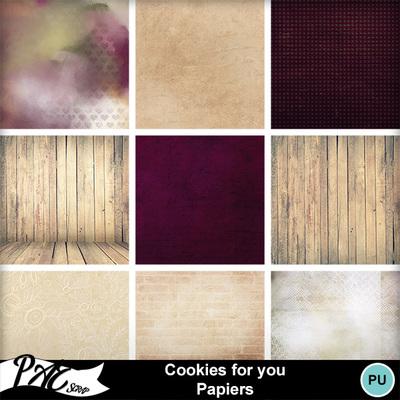 Patsscrap_cookies_for_you_pv_papiers