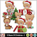 12_bears_of_christmas_2_preview_small