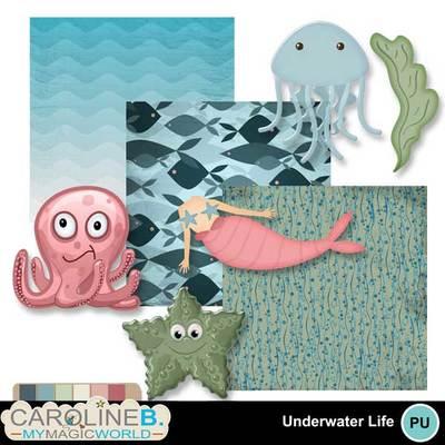 Underwater-life-mini2_1