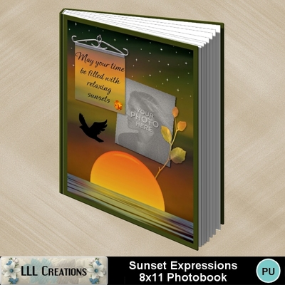 Sunset_expressions_8x11_photobook-001a
