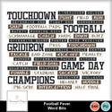 Sd_footballfever_wb_small