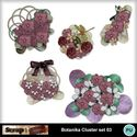 Botanika_cluster_set_03_small