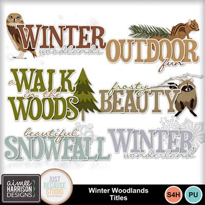 Aimeeh-jbs_winterwoodlands_ti