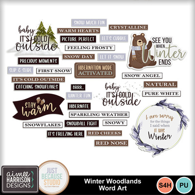 Aimeeh-jbs_winterwoodlands_wa