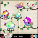 Crazy_birds_small